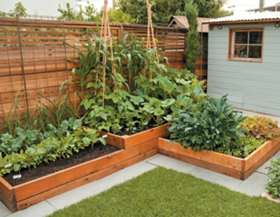 No Dig Vegetable Gardens With Raised Garden Beds